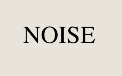 Review of Noise by Kahneman
